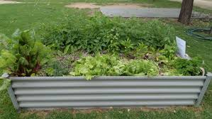 big4 parks with veggie and herb gardens