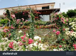 beautiful country house surrounded by garden stock photo 48065008