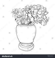 Vase Drawing Vector Drawing Sketch Vase Flowers Hand Stock Vector 273560876