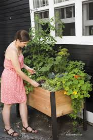 Self Watering Planters See These Self Watering Planter Options And Ideas