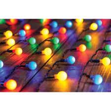 multicoloured berry lights