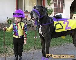 Family Dog Halloween Costumes 10 Dog Costume Images Horse Costumes Animal