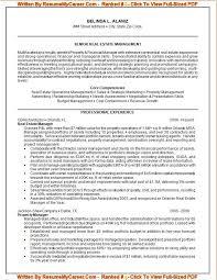 It Job Resume by Professional Resume Help Haadyaooverbayresort Com