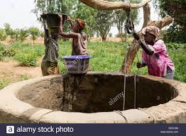 wolof women drawing water from well to irrigate vegetable garden
