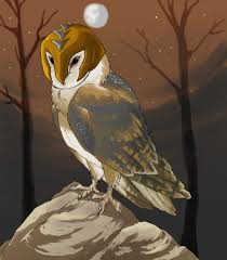 Art School Owl Meme - my guardians of ga hoole meme by ski machine on deviantart