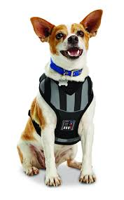 star wars dog halloween costumes 53 best star wars pets images on pinterest dog toys pet