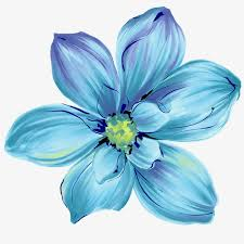 blue flowers blue flowers flower watercolor flower png and psd file for free
