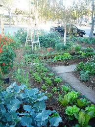 garden outstanding image of small vegetable garden decoration