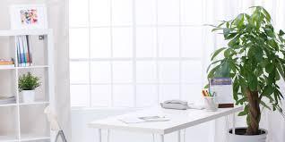 Facebook Office Interior Design Most Effective Office Interior Design With Plants U2039 Htpcworks Com