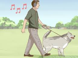 3 Ways to Have Fun While You re Walking Your Dog wikiHow