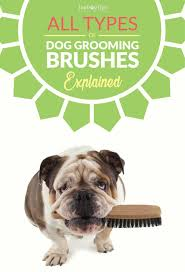 types of dog grooming brushes and their uses u2013 top dog tips