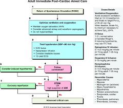 part 9 post u2013cardiac arrest care circulation