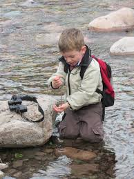 join the rcwg to explore your backyard creek july 9th 6 7 pm