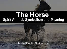 the spirit animal a complete guide to meaning and symbolism