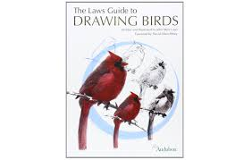 33 best plants for birds 45 perfect gifts for the bird and nature lovers in your life audubon