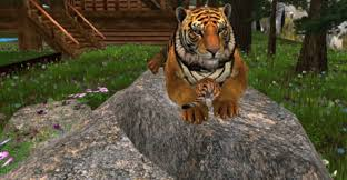 second marketplace tiger on a rock with a tiger flowers