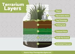 terrariums fix com
