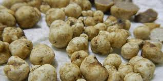 Where To Buy Truffles Online 1 650 Per Kg Truffle Expert Talks About South Africa U0027s Budding