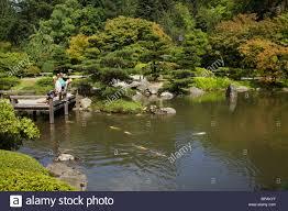 seattle japanese garden koi pond stock photo royalty free image