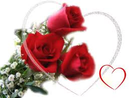 Rose Flower Images Valentines Day Images 2014 Valentine Card Free Happy