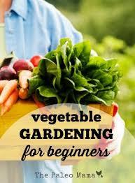 25 unique gardening for beginners ideas on pinterest vegetable