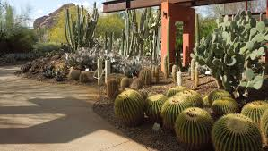 Scottsdale Botanical Gardens Arizona Botanical Gardens Greenfain