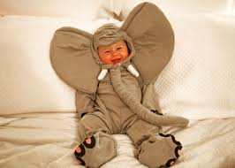 Elephant Halloween Costume Baby 42 Baby Halloween Costumes Images Costumes