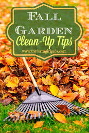 best 25 fall clean up ideas on pinterest