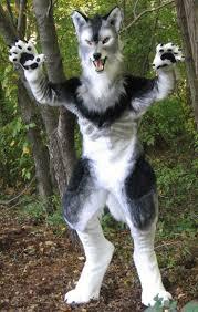 lemur halloween costume 201 best costume images on pinterest furry art fursuit and