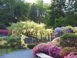 japanese flower garden wallpaper interior design