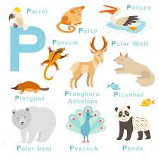 imagenes en ingles con la letra p conjunto de animales letra p archivo imágenes vectoriales