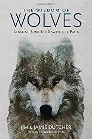 wolf a true of survival and obsession in the