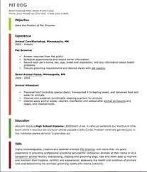 robotics electronics technician sample resume http