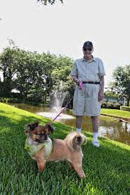 pets are welcome at hyde park retirment community