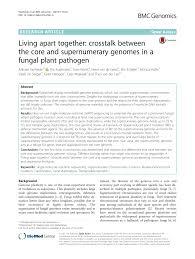 mutagenetix phenotypic mutation deer b chromosomes in population of mammals pdf download available