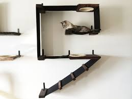 fancy cat shelves for walls 92 about remodel clear wall shelves