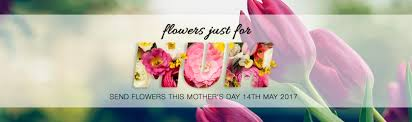 Mother S Day 2017 Flowers by Mothers Day Banners For Florists Flower Store In A Box