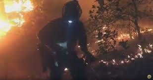 Wildfire Dc by Video Hotshots Rescue Fawns In Arizona Wildfire Wildland