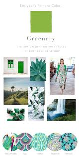 pantone colour of the year 2017 greenery pantone color of the year 2017 u2013 all for color