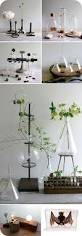 Ideas For Decorating An Office Best 25 Science Room Decor Ideas On Pinterest Science Room