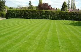 Superior Lawn And Landscape by Lawn Mowing Archives U2022 Basil Green Landscaping