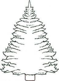 how to draw how to draw a pine tree hellokids com