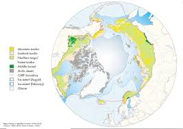 World Map Biomes by Caff Map No 33 Major Biomes Vegetation Zones Of The Arctic
