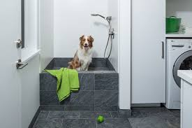 Bathtubs For Dogs Dog Wash Tub Laundry Room Contemporary With Dog Shower Dog Wash