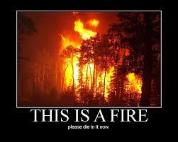 Fire Meme - meme classics this is a fire please die in it now