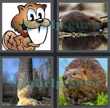 4 pics 1 word all level 2301 to 2400 6 letters answers game