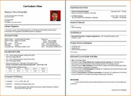 Professional Resume Format For Fresher by Standard Resume Format For Freshers Engineers It Cover Download