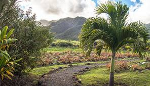 Beach House Rentals Maui - vacation rentals book cabins beach houses condos tripadvisor