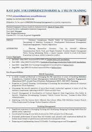 construction safety officer sample resume professional