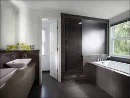 Bathroom  Modern Half Bathroom Ideas Bathroom Pictures Cool - Modern country bathroom designs
